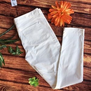 TAHARI size 6 new with tags ❤️ ankle pants